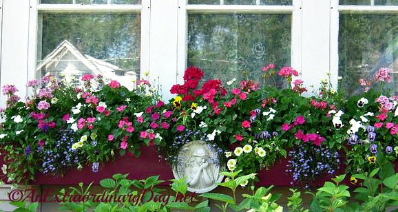 Inspiration for a cottage style window box container garden