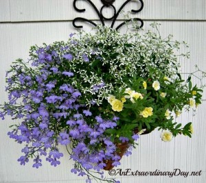Creating a Pretty Container Garden | Nine Steps to Start