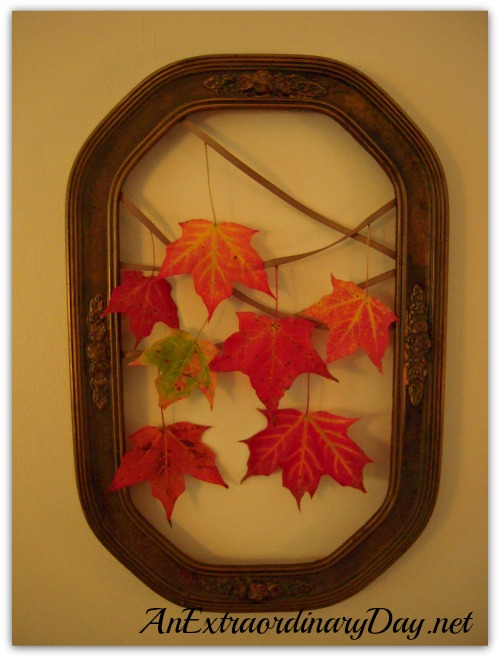 AnExtraordinaryDay.net | Framed | DIY Maple Leaf Wall Display | Red Maple Leaves