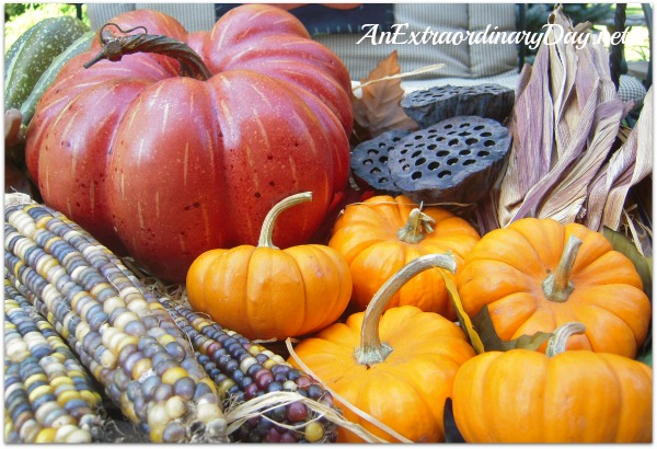 AnExtraordinaryDay.net | Pumpkins = Orange Sunshine | Fall Decor