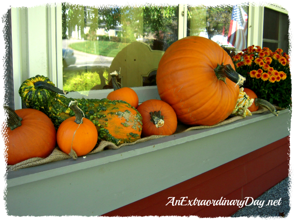 AnExtraordinaryDay.net {Day 12}  31 Extraordinary Days  {Window Box Plumping with Pumpkins}