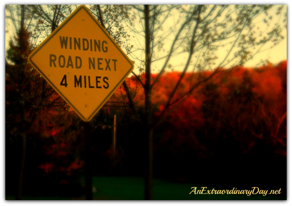 AnExtraordinaryDay.net {Day 25} 31 Extraordinary Days | Commitments| Winding Road Caution Sign