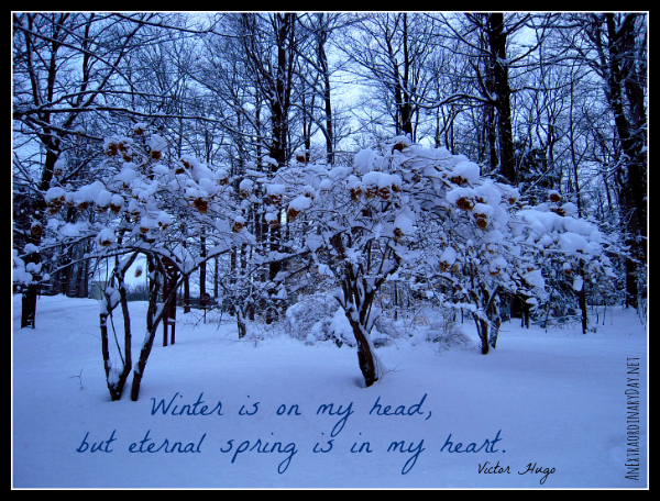 Beauty for your day...Winter Scene - Victor Hugo Quote - AnExtraordinaryDay.net