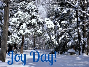 Wintry Snow Scene :: Joy Day! :: Faith in tough times :: AnExtraordinaryDay.net