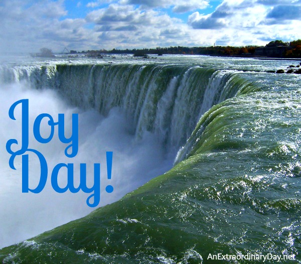 Joy Day! :: Niagara Falls :: AnExtraordinaryDay.net