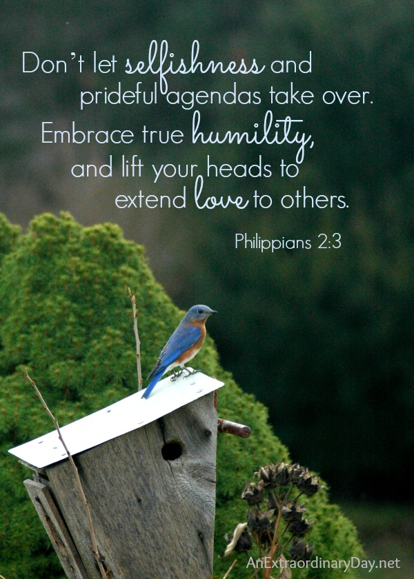 Ruffled Feathers ::  #ScriptureQuote :: Philippians 2:3 ~ Don't let selfishness and prideful agendas take over.  :: AnExtraordinaryDay.net