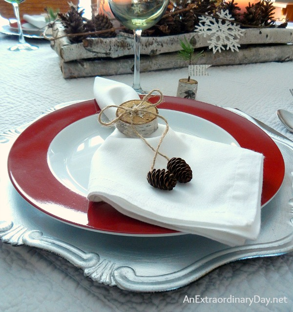 Birch Woodland Table Setting :: How to Make Birch Napkin Rings :: Tutorial :: AnExtraordinaryDay.net