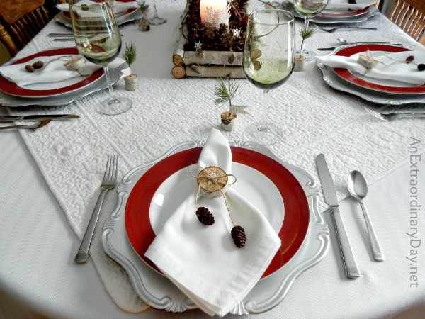 Winter White with Red Accent Table Setting :: Birch Branch Winter Woodland Tablescape :: AnExtraordinaryDay.net