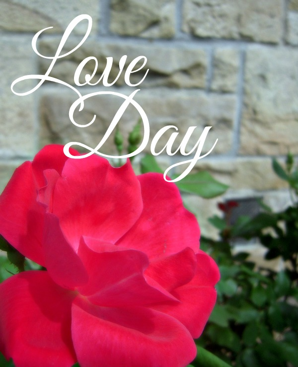 Love Day - Joy Day!  AnExtraordinaryDay.net
