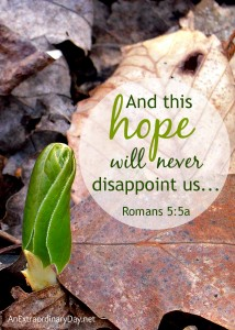And this hope will never disappoint us... from Romans 5:5 :: AnExtraordinaryDay.net
