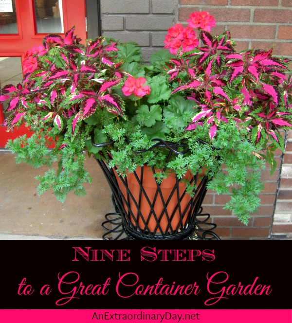 Nine Steps to a Great Container Garden - AnExtraordinaryDay.net