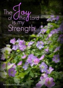 The Joy of the Lord is my Strength - Quote - AnExtraordinaryDay.net