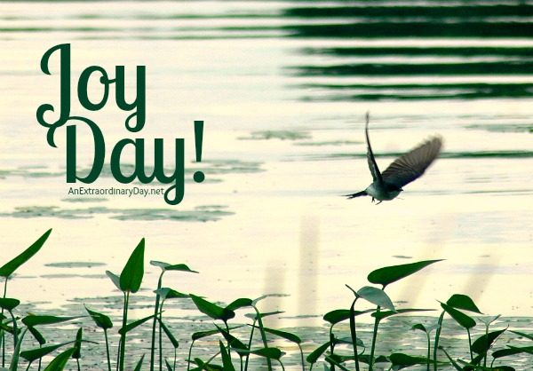 Missing God's blessing?  ::  Joy Day!  ::  AnExtraordinaryDay.net