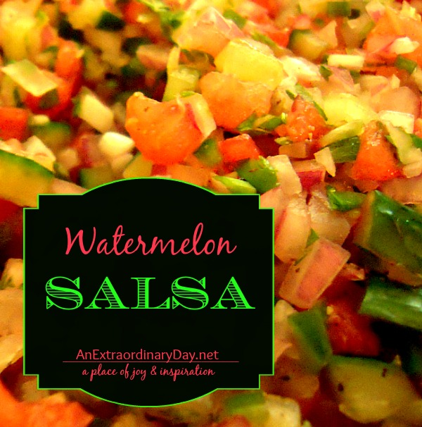 Watermelon Salsa Recipe :: AnExtraordinaryDay.net
