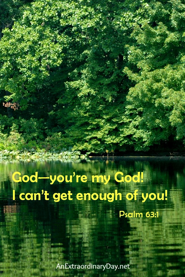God, I can't get enough of you! Psalm 63 #ScriptureQuote by AnExtraordinaryDay.net