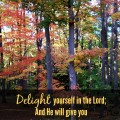 Delight yourself in the Lord from Psalm 37
