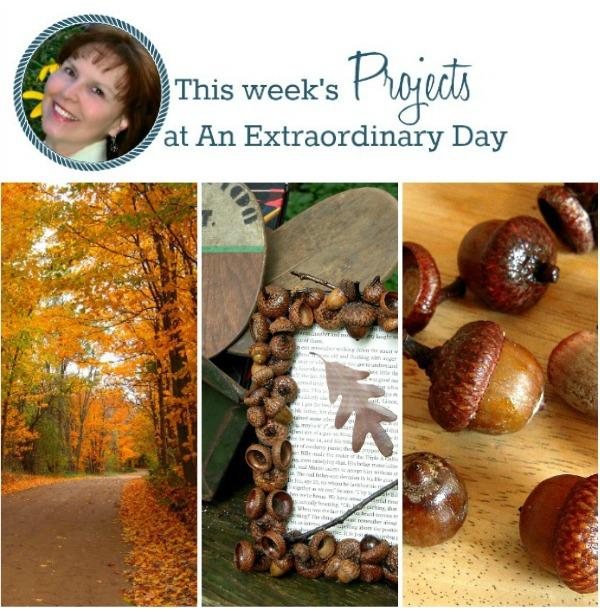 This week at An Extraordinary Day