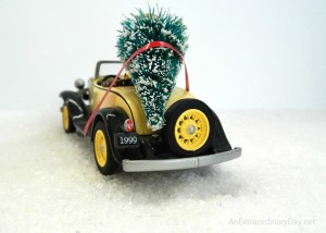 Bringing Home the Tree :: Christmas Trees on Cars