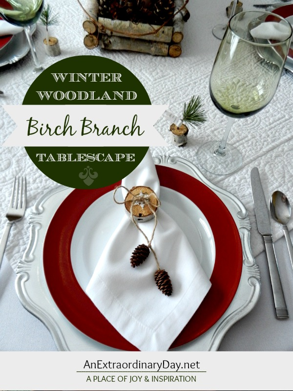 Birch Branch Winter Woodland Tablescape is a Top 10 Posts for 2014 at AnExtraordinaryDay.net