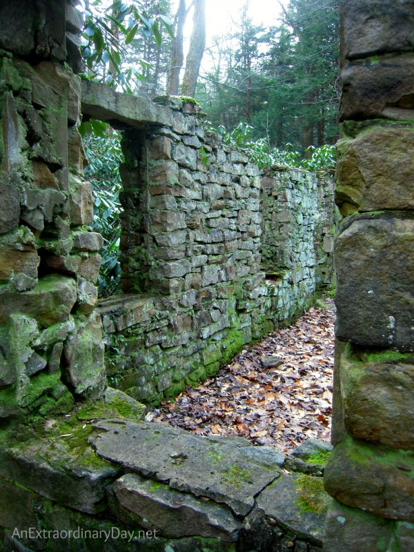 "Ruins of a house at Linn Run and thoughts on cleaning ""house"" for Christmas."
