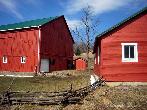 Red Pennsylvania barns with green roofs.