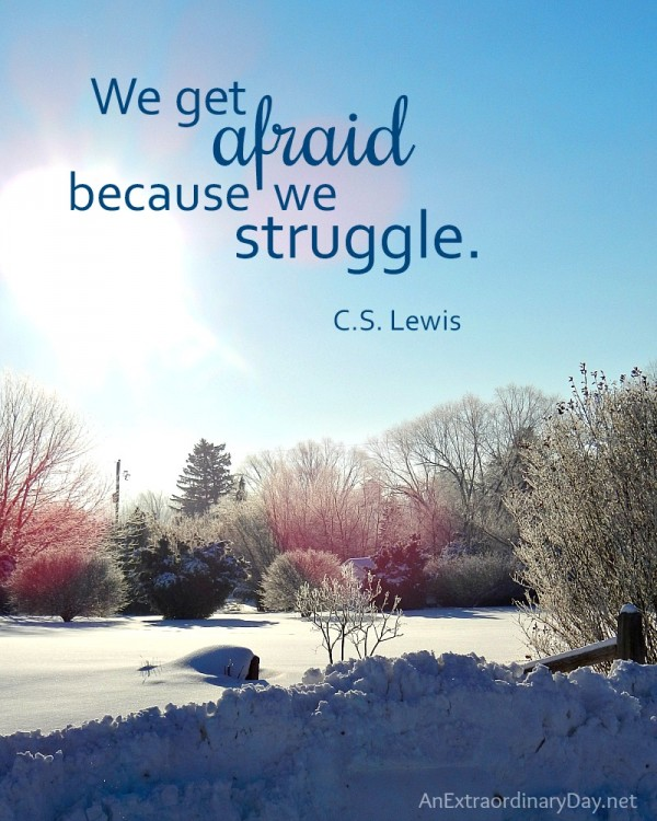 What are you afraid of  We get afraid because we struggle. C.S. Lewis - AnExtraordinaryDay.net