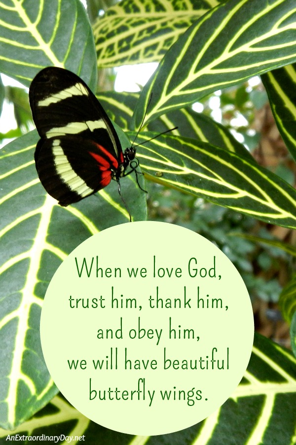 How to Glorify God :: When we love God, trust him, thank him, and obey him, we will have beautiful butterfly wings. #inspirationalquote | Hewitson's Longwing Butterfly