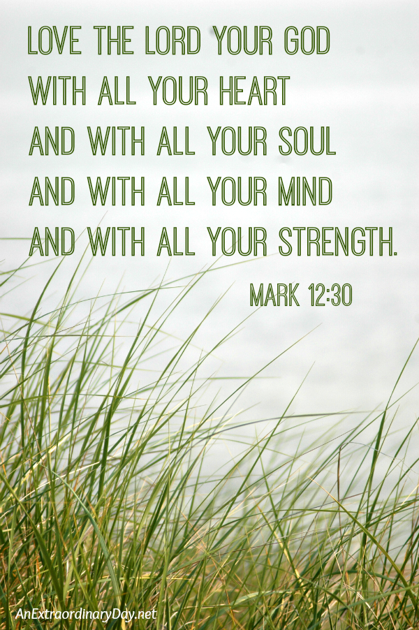 Love the Lord your God with all your heart and with all your soul and with all your mind and with all your strength. Mark 12:30
