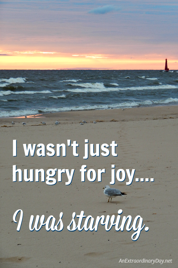 I wasn't just hungry for joy... I was starving. How to live in the present filled with joy. An inspired devotional to help you live more fully and beautifully than ever before.
