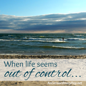 When life seems out of control… :: JoyDay!