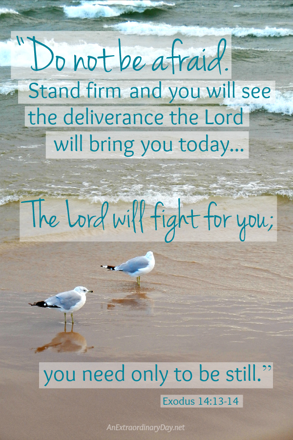 Everyone you meet is fighting a hard battle - Do not be afraid. Stand firm... The Lord will fight for you.
