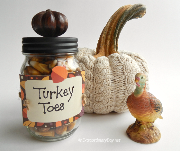 Sweater Pumpkin and Turkey Toes ~ Quick and Fun Mason Jar Gift Project - AnExtraordinaryDay.net