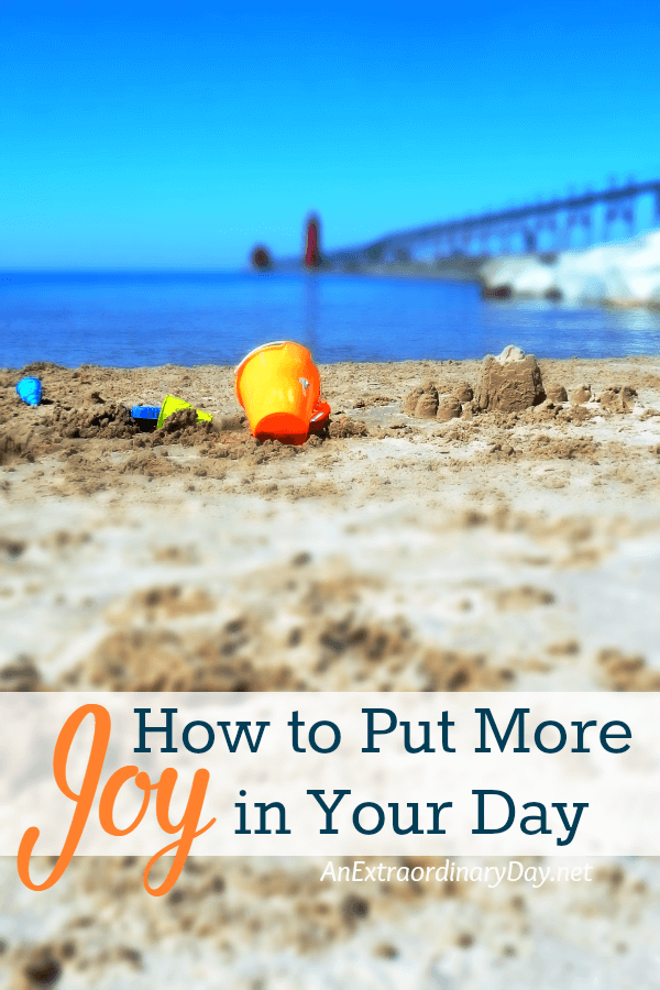 How to Put More Joy in Your Day from AnExtraordinaryDay.net