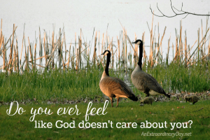 For When You Feel Like God Doesn't Care | JoyDay!
