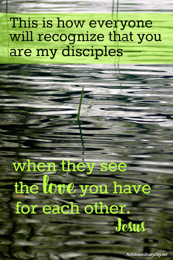 This is how everyone will recognize that you are my disciples-- when they see the love you have for each other - Jesus Scripture Quote at AnExtraordinaryDay.net
