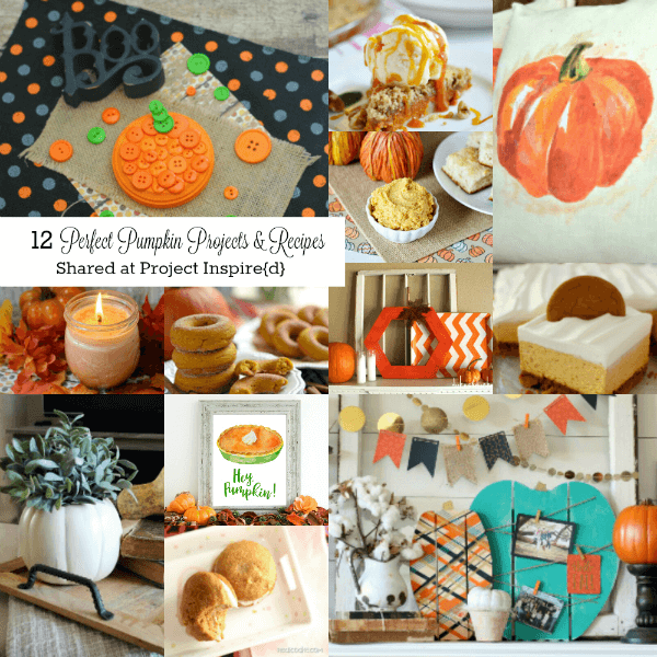You'll LOVE these 12 Pumpkin Projects and Recipes to Make and Eat at AnExtraordinaryDay.net