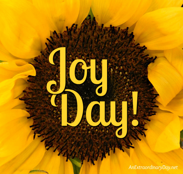 Center of a Sunflower - JoyDay! - AnExtraordinaryDay.net