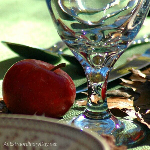 Gorgeous glass goblet with exquisite color and refraction makes my heart so happy - AnExtraordinaryDay.net