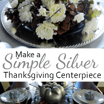 You CAN create a simple and low cost silver centerpiece for Thanksgiving.