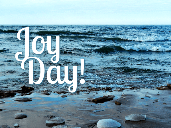 A New Year and JoyDay! - AnExtraordinaryDay.net