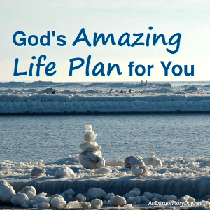 God's Amazing Big Life Plan for You | JoyDay!