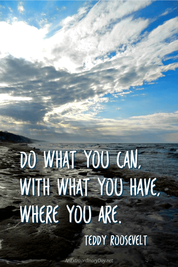 "Inspiration for the New Year: No coulda, woulda, shouldas! Instead... ""Do what you can, with what you have, where you are. - Teddy Roosevelt Quote"