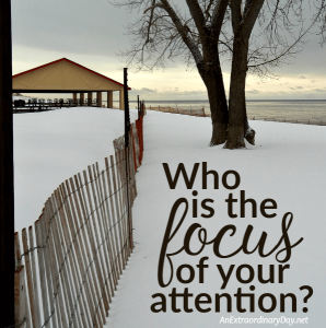 Who is the focus of your attention? | JoyDay!