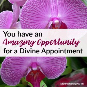 You have an Amazing Opportunity for a Divine Appointment | JoyDay!