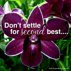 Are you settling for second best? | JoyDay!
