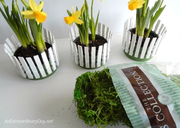 Moss is the finishing touch for the little picket fence flower containers made from tuna cans