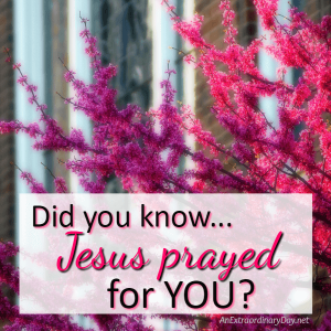 Jesus Prayed for Your Protection and Joy | JoyDay!