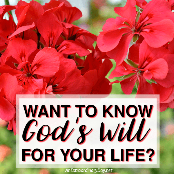 Want to know God's will for your life?