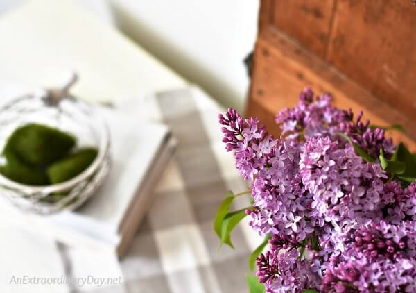 Bringing joy and beauty into our homes with lilacs