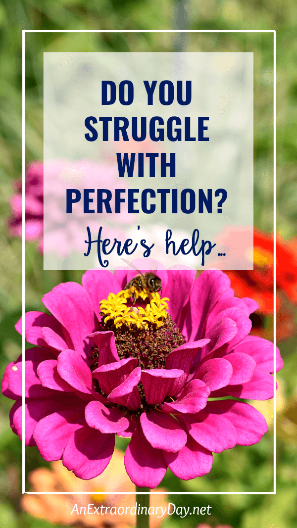 Inspiring thoughts for overcoming perfectionism when all you want is the perfect body, the perfect outfit, the perfect house, and really the perfect life. Devotional